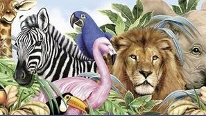 اختبار رائج: اختبر معلوماتك حول أسرار عالم الحيوانات