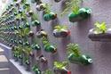 أفكار للإستفادة من العلب البلاستيكية الفارغة في الديكور