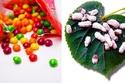 بالصور 12 حقيقة غريبة عن الطعام يجب أن تعرفها