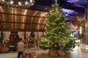 صور أغلى شجرة كريسماس في العالم مليئة بالألماس والنقود: هذا سعرها