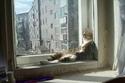 قطة تستلقي على حافة النافذة لتكون مواجهة للشمس