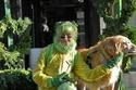 السيدة الكندية Elizabeth Eaton ذات ال 75 عاماًترتدي كل ما هو اخضر2