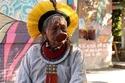صور عمره 89 عامًا.. رجل واحد وراء الحفاظ على غابات الأمازون من الحرائق