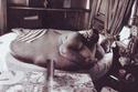 فرانسيس جون لانج - وزنه 538.414 كيلوغرام