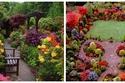 صور ثنائي عمره 71 عام.. حولوا حديقة منزل عادية إلى مكان لن تتخيل جماله