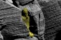 التابوت عليه كتابة معقدة تشبه اللغة المصرية القديمة