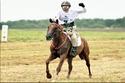 محمد بن زايد يعشق الفروسية وتربية الخيول الأصيلة