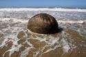 صور رائعة لصخور تشبه السلاحف