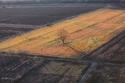 صور ساحرة التقطت بواسطة الطائرات تعكس جمال طبيعة جورجيا