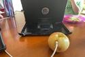 الصغير اعتقد أن التفاحة هي الشاحن الخاص بالهاتف