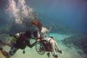 صور: جلسة تصوير إنسانية عمرها 7 أعوام بكرسي متحرك تحت البحر