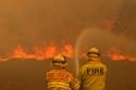 صور مأساوية من قلب حرائق أستراليا موت وفناء ودمار