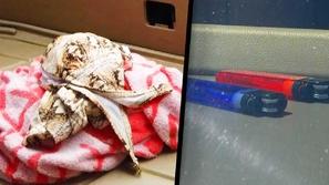 فيديو: مع ارتفاع درجات الحرارة.. احذر ترك هذه الأشياء في سيارتك