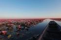 بحيرة اللوتس الأحمر