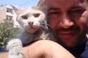 شعر محمد علاء الجليل بمسؤولية تجاه تلك القطط التي لا تجد من يرعاها