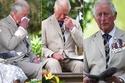 الأمير تشارلز بكى خلال وضع الزهور على النصب التذكاري لسكك حديد كواي