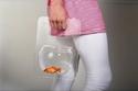 أداة غريبة لاصطحاب حوض الأسماك إلى أي مكان