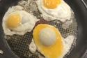 البيضة في المقلاة انقلبت وتحولت لهذا الشكل