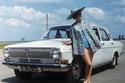 """دعاية السيارة السوفيتية """"فولغا"""" (غ أ ز - 24)"""