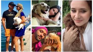 صور: هوس وعشق المشاهير العرب للكلاب.. البعض يعتبرهم أفضل من البشر