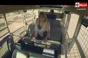 وجود كاميرات داخل السيارة في برنامج هاني في الأدغال