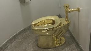 صور: لمدة 3 دقائق.. هل تدفع هذا المبلغ مقابل استخدام مرحاض من الذهب؟