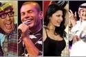 فرق كرة القدم المفضلة عند المشاهير العرب: رقم 17 زملكاوية متعصبة