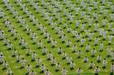 صور تظهر قدرة الصين الخارقة في التنظيم رغم تعدادها السكاني الهائل