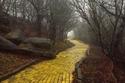 طريق ذو طوب اصفر في ارض ملاهي متصحرة(ارض اوز)، كارولينا الشمالية