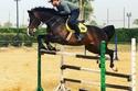 أحمد السقا - ركوب الخيل