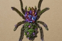 حشرة الكوتزيتلانا