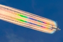 مصور الأسترالي مايكل مارستون هذه اللقطة المذهلة لطائرة بوينغ 777