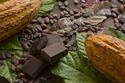 أشكال الشوكولاتة حول العالم: بعضها يثير الاشمئزاز