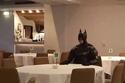 صورة مضحكة تم التقاطها داخل أحد المطاعم