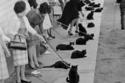 القطط السوداء تصطف مع ملاكها لاختبارات الأداء لفيلم حكايات الرعب