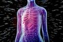 3-سيؤثر التعرض للإشعاع على صحتك
