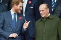 الأمير هاري مع الأمير فيليب من المدرجات