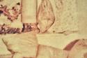 صورة نادرة لحاكم دبي محمد بن راشد