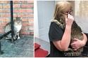 لقاء يذيب القلوب بين امرأة وقطتها