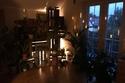 منزل جو به أكثر من 1400 نوع مختلف من النباتات