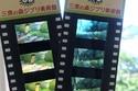 تذاكر متحف جيبلي مصنوعة من إطارات أفلام