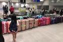 الحقائب في المطار يتم ترتيبها وفقًا للألوان