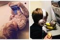 صور: إبداعات الأطفال لحل المشاكل اليومية.. بينها طرق مبتكرة للغش 😂