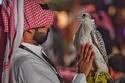 صور: تعرف على فعاليات الدورة الأولى لمعرض الصقور والصيد السعودي