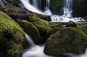 صور من الطبيعة