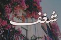 يعود أصل اسم شغف إلى اللغة العربية