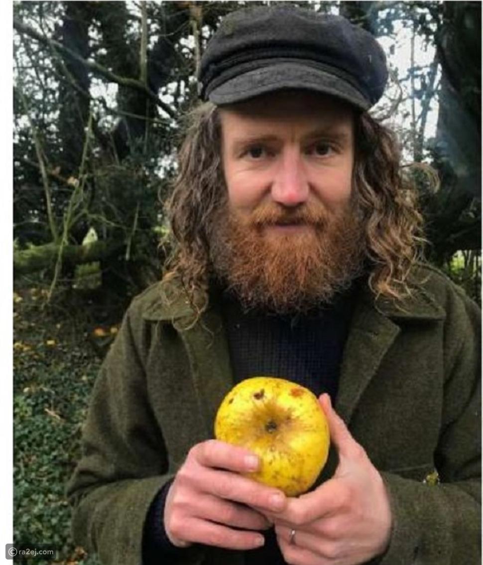 العثور على نوع غريب من التفاح: الصدفة وحدها هي السبب