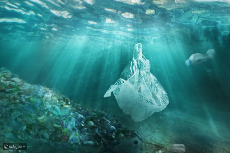 في يومها العالمي: كيف نحمي المحيطات من التلوث؟
