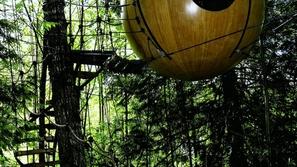 20 صورة مدهشة لمنازل مبنية على أشجار ممتازة لأجمل إجازة في الصيف