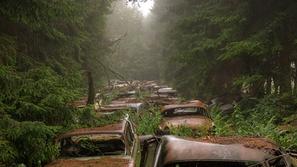 شاهد صور من مقبرة سيارات في بلجيكا